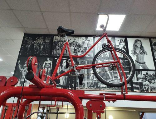 Paneles decorativos para gimnasio