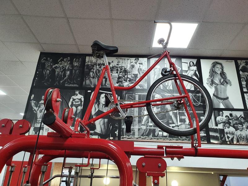 decoracion gimnasio